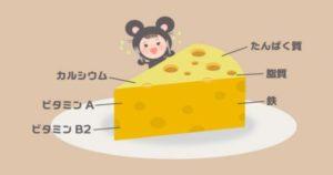 バストアップの食べ物でチーズは効果あり?